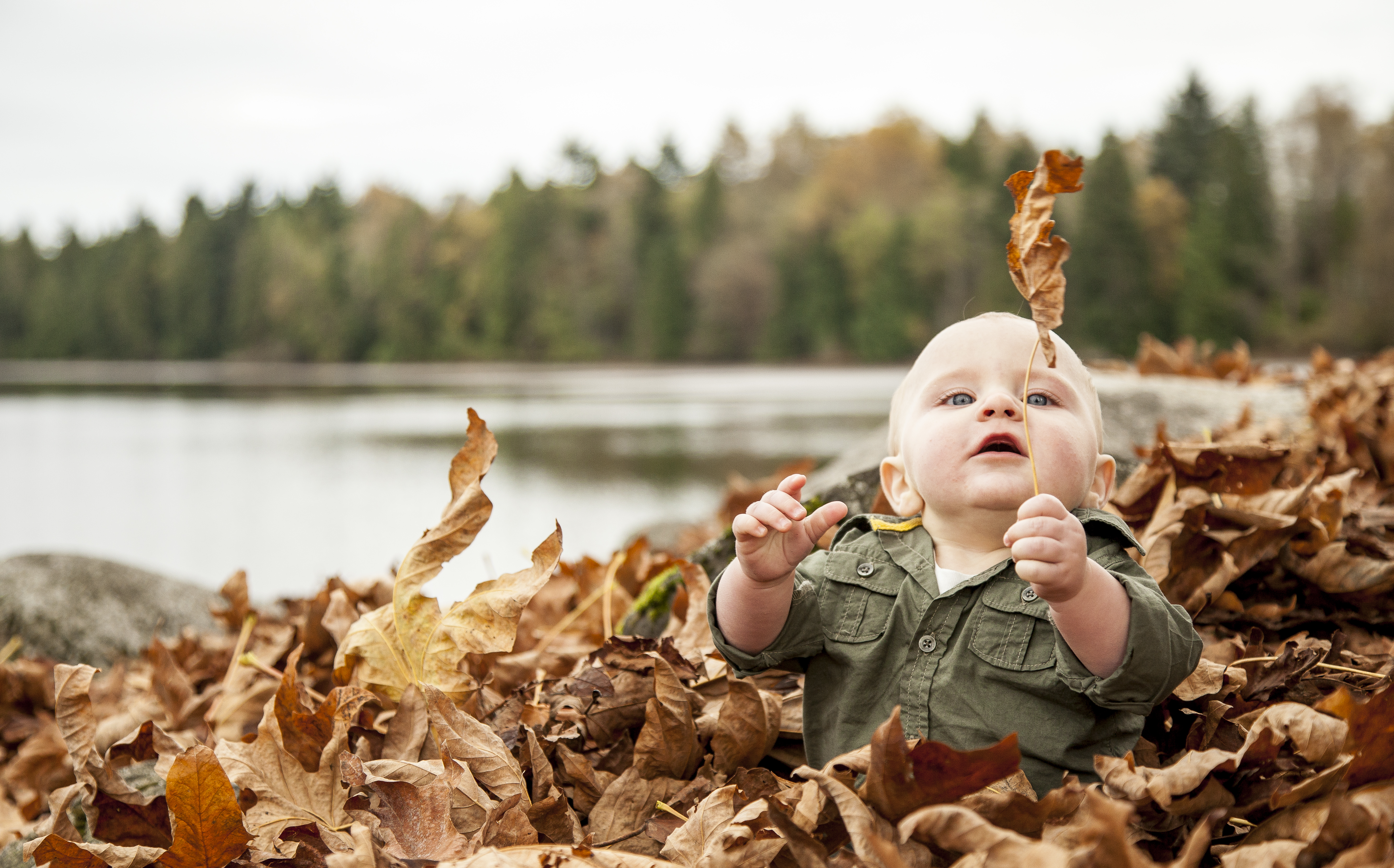 Nugent Family Fall Photos
