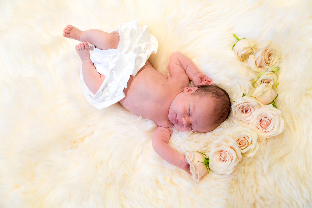 Baby Rose Session
