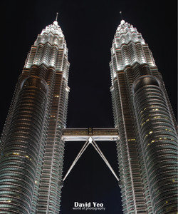 Twin Tower Photo Gallery