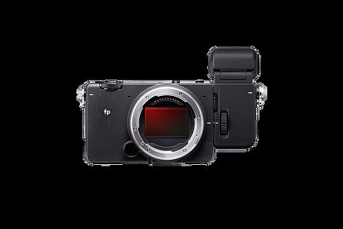 fp-L full frame Digital Cinema / still Camera & EVF-11
