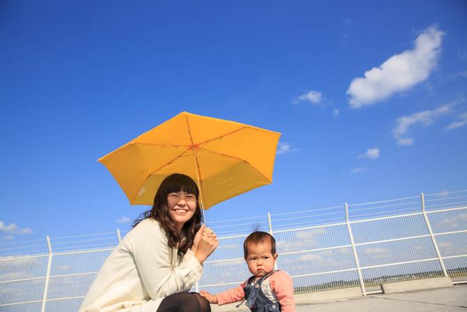 傘のカタログ撮影
