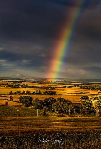 rainbow 2 (5).jpg