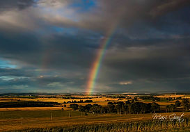 rainbow 1 (5) (Copy).jpg