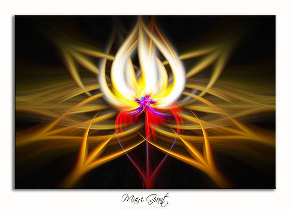 IMG_0411 fire 2 twirl framed.jpg
