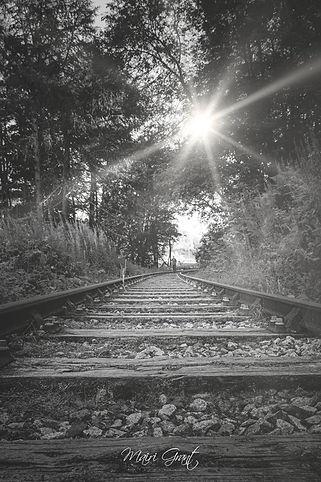 IMG_5215 flare (Copy).jpg