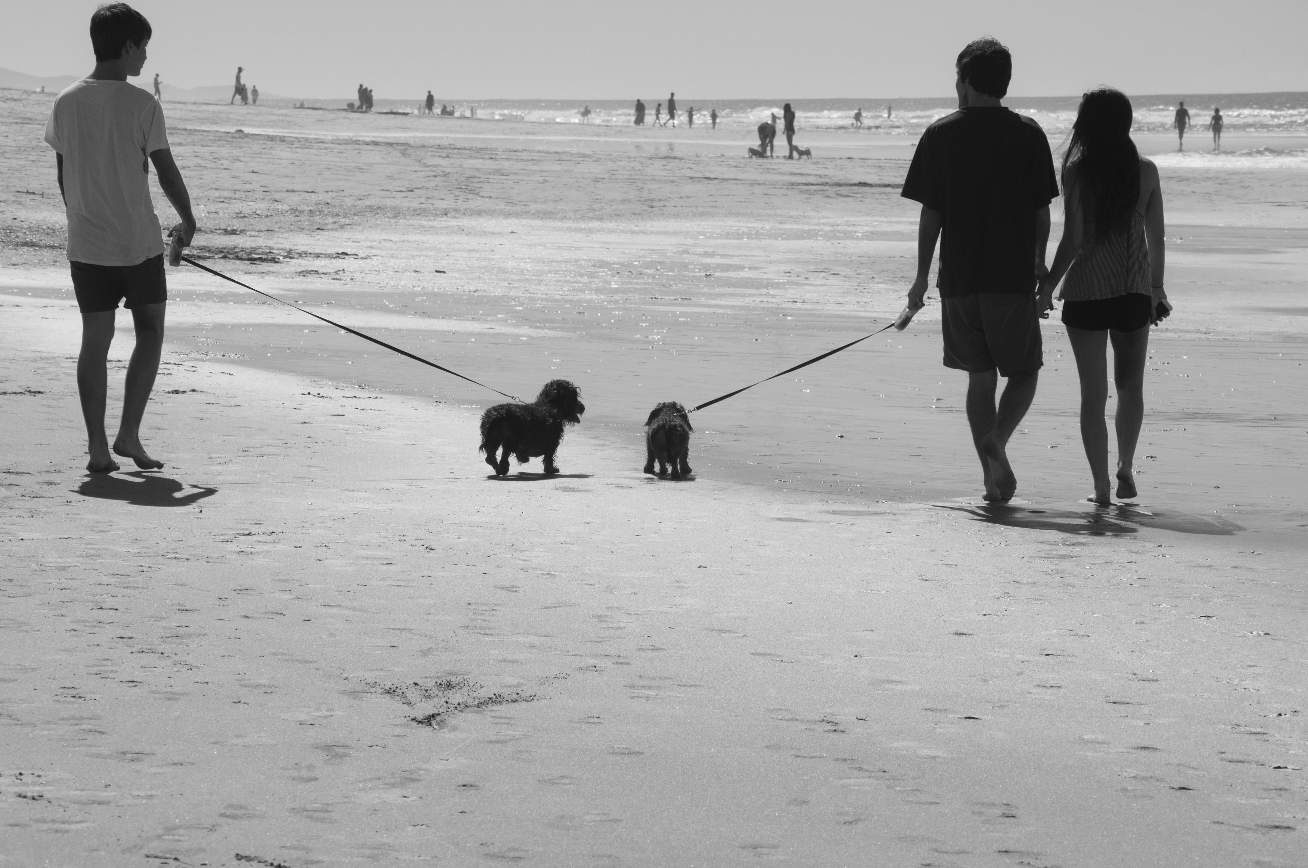 beach28