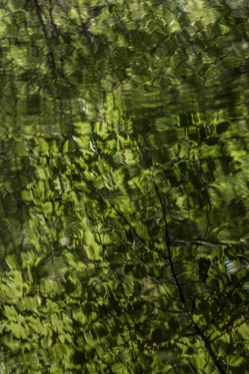 Hosmer Reflection 9