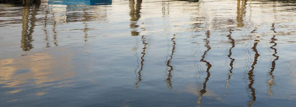 Camden Harbor Masts