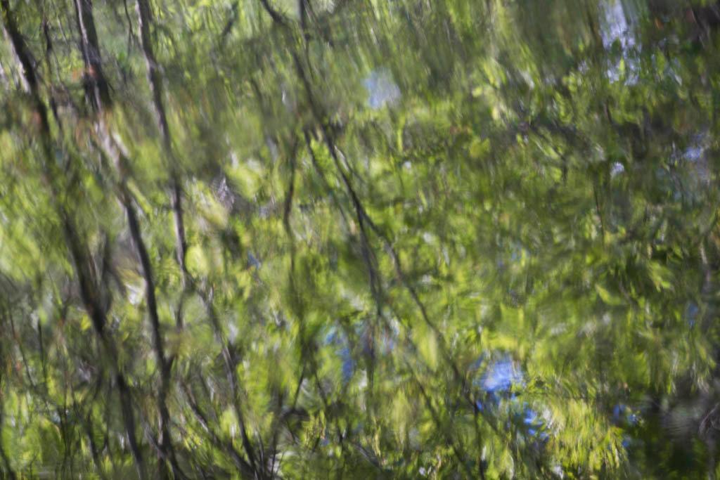 Hosmer Reflection 8