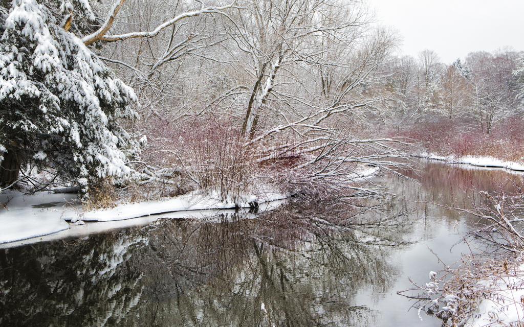 Canoe Meadows