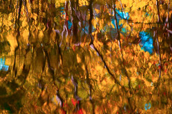Hosmer Pond Orange