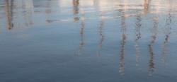 Camden Harbor Masts II