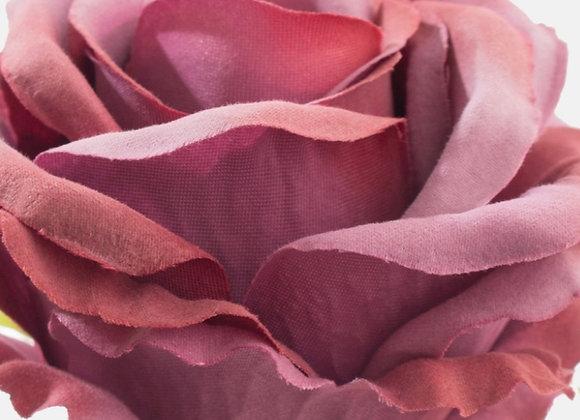 Burdundy rose head only