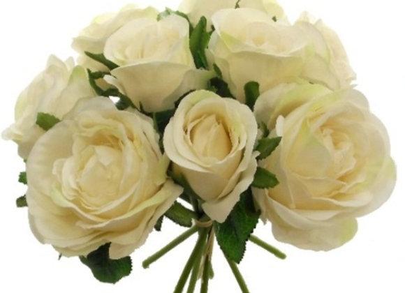 Cabbage rose bundle cream