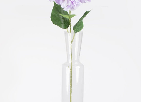 Large hydrangea stem
