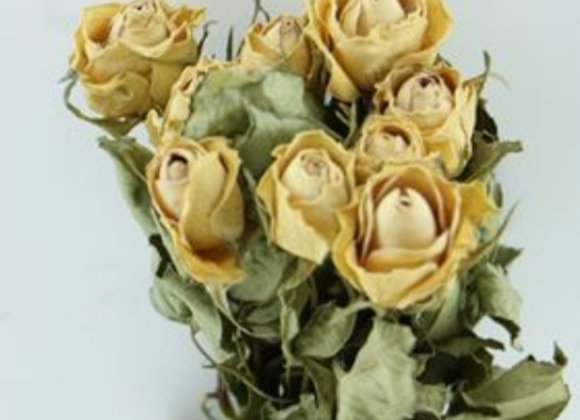 Small scented rose dried 10 pieces