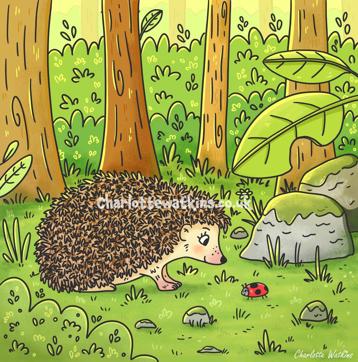 Hedgehog and Ladybird Friends