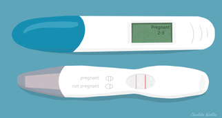 week 4 - pregnancy test