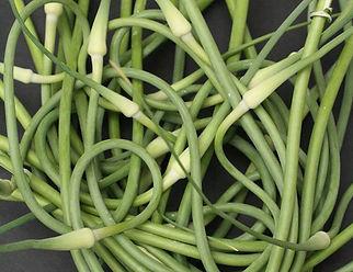 garlicscapes.jpg