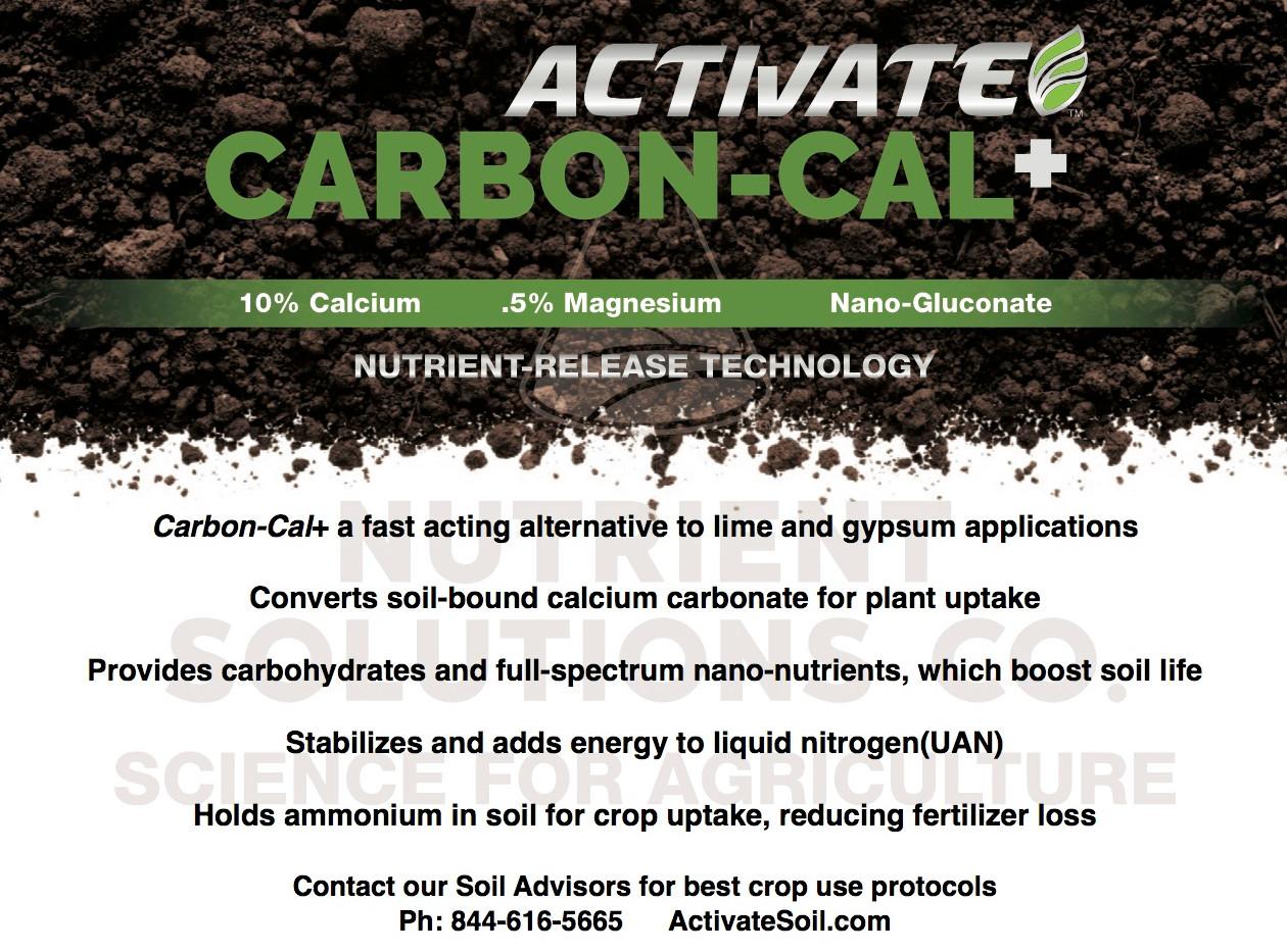 CarbonCal+ web intro.jpg