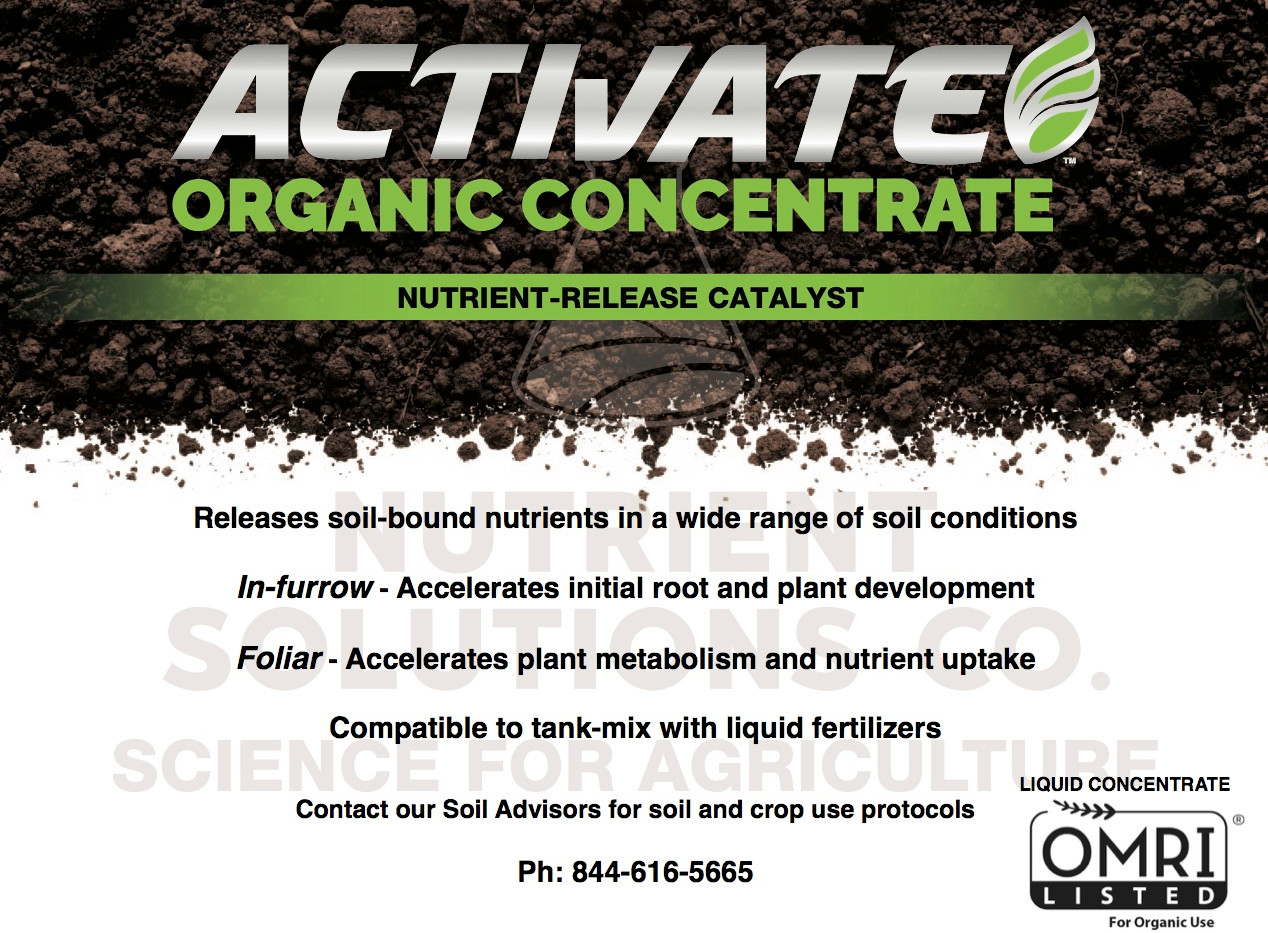 Organic Concentrate intro.jpg