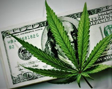 Cannibus leaf with 100$ bill