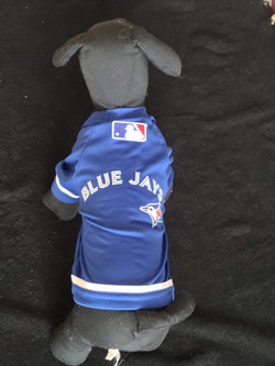 60. Bailey and Bella Blue Jays sweater XXS