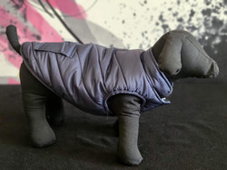 11. Bailey and Bella puffy grey XS, S, M, L