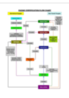 Flow chart 11.jpg