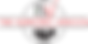 Logo-TSJ-RGB-2.png