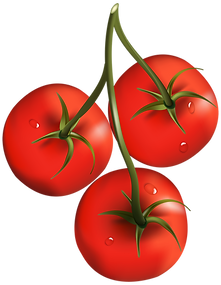 tomato_PNG12597.png