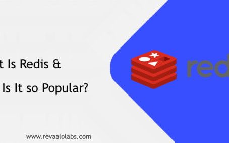 What Is Redis and Why Is It so Popular?