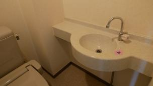 【リフォーム現場リポート】トイレと収納のAfter