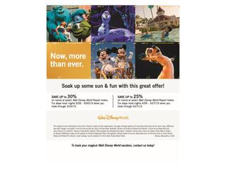 Walt Disney World Spring/Summer Room Discount Offer