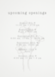 Upcoming Openings.png