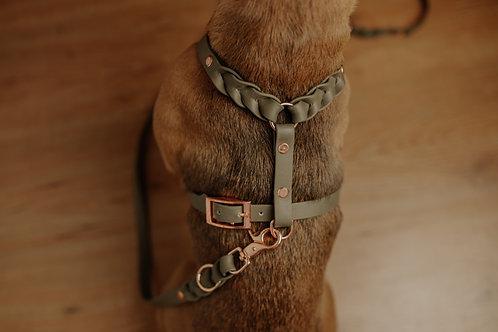 Biothane Hundegeschirr ohne Leine