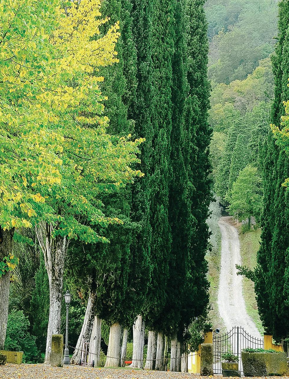 San Fedele, Italy