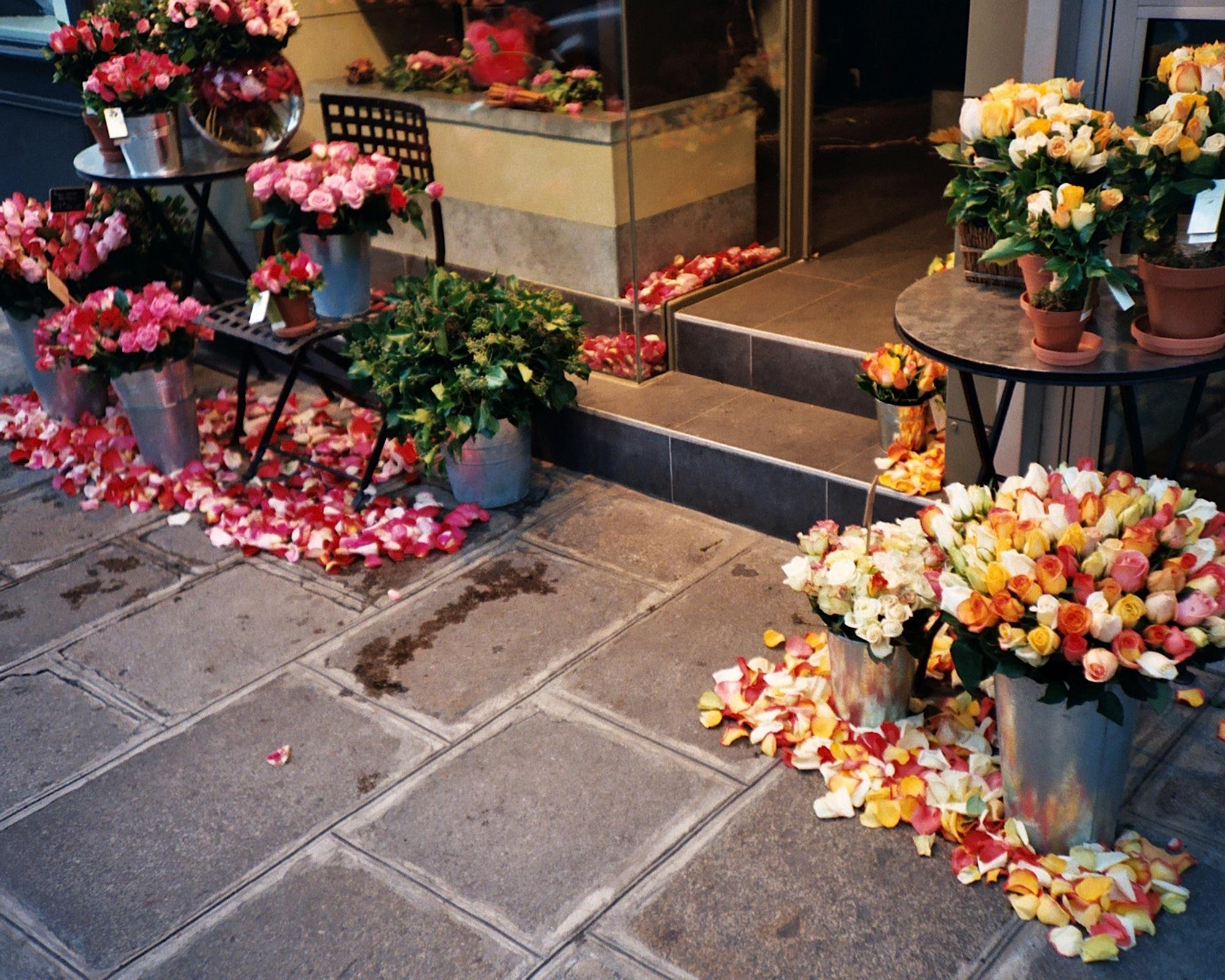 paris-flowers-16x20-021_25.jpg