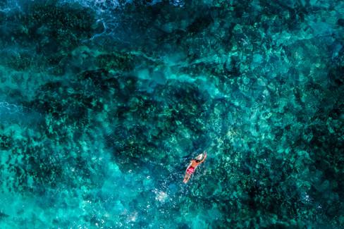 Surf Guadeloupe.jpg