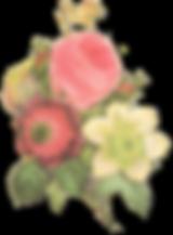 Blumen-Illustration