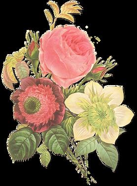 Ejemplo de la flor