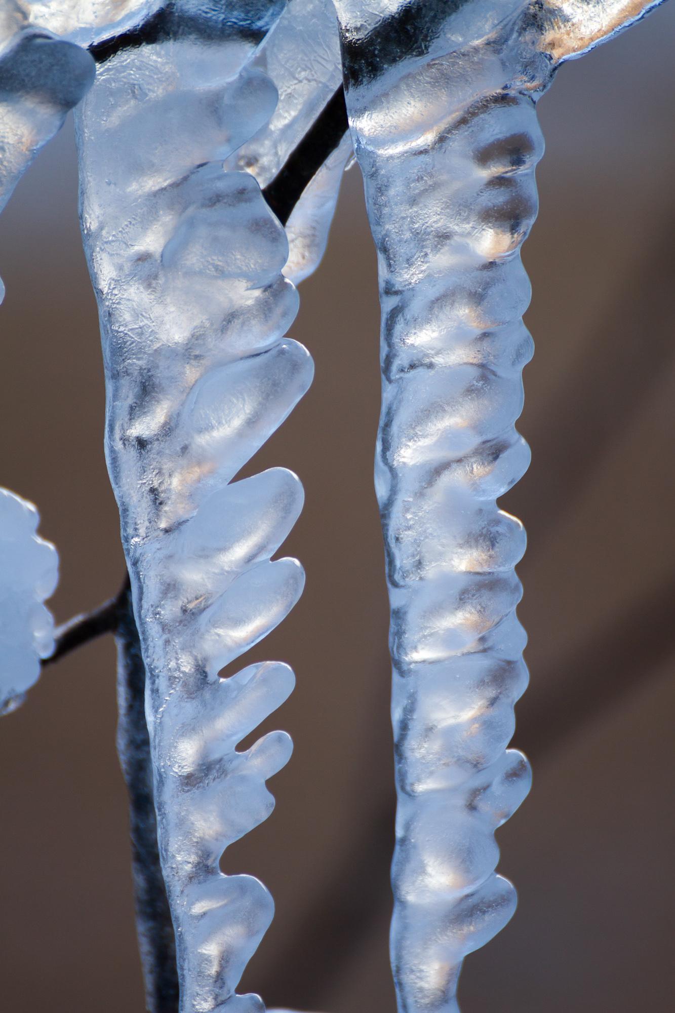 凍てつきの造形 Ⅵ