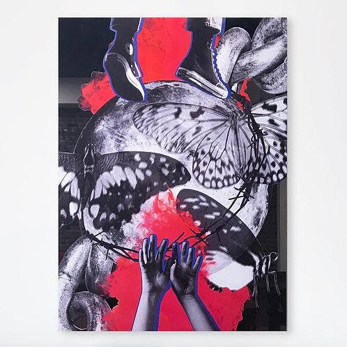 """Wings (Collage sur miroir) - 27x37"""""""