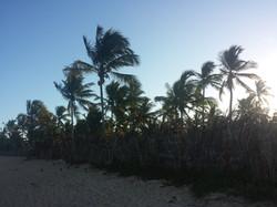 Praia dos Coqueiros 20180115