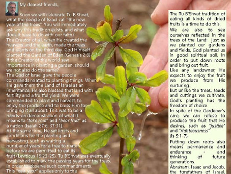 Tu B'Shvat - planting the Tree of Life in the Land of Life!