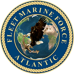 "US Marine Corps Altantic ""Fleet Marine Force"" patch."