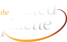 Plated Palette_Logo_b (2).png