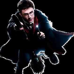 harry-potter-500-watchers-harry-potter-p