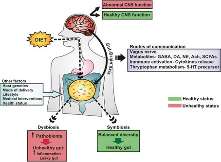 Gut-Brain Communication: Major Mechanisms in Mental-Emotional Health and Disease (2017)