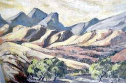Flinders Ranges by Ronald C Bell